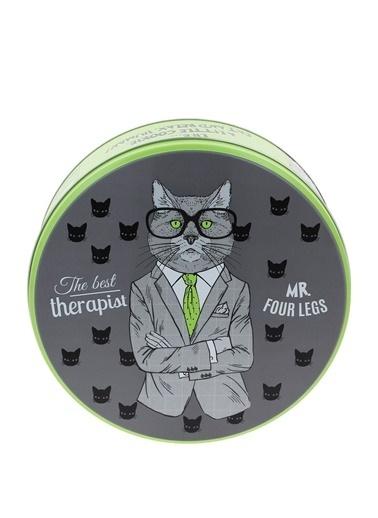 WuW The Therapist Cat Metal Kutu Renkli